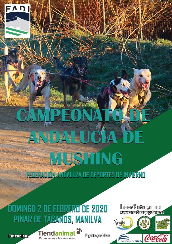 Casi 100 deportistas participan en el Cto de Andalucía de Mushing