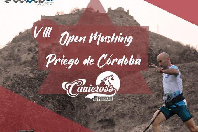 El próximo 7 de febrero vuelve la competición de Mushing en Andalucía, con el CAMPEONATO DE ANDALUCIA.